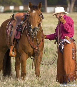 horse-owners-college-staion-tx